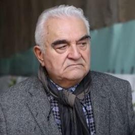 Prof. Sebastiano Pelizza